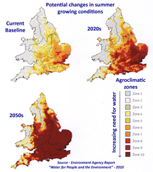 Growing Conditions
